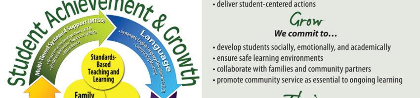 DDSD Mission Vision Banner