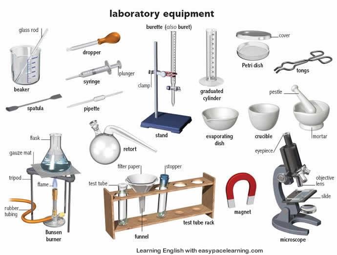 general science david douglas school district