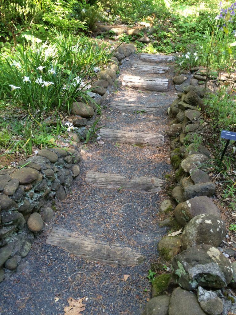 Leach Botanical Path log steps