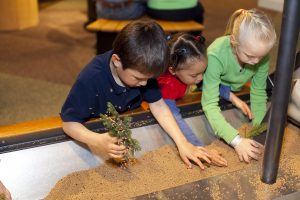 Three kids engaged in a tree planting exhibit