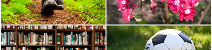 4 photos: hiker feet on trail, pink blossoms, library book shelves, soccer ball